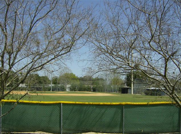 Baseball Field and trees