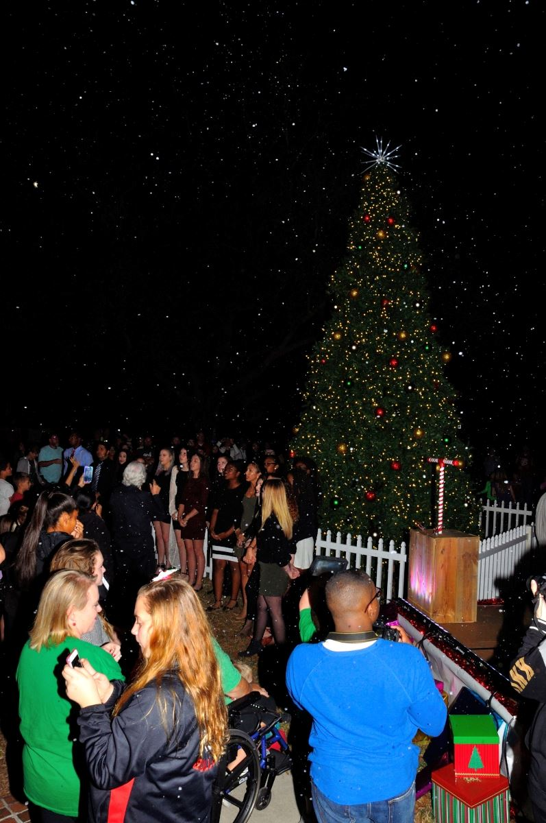 2016 Christmas Tree Lighting